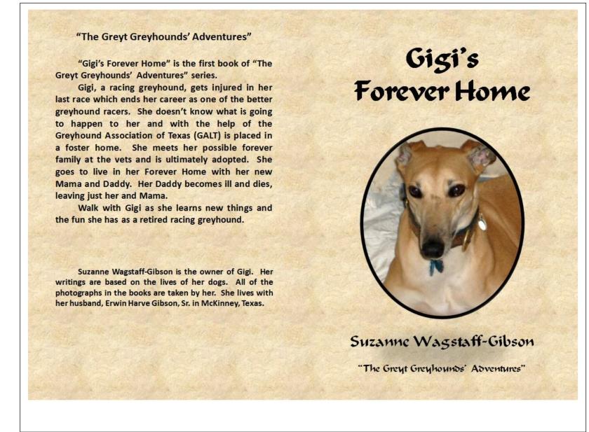 Gigis book cover